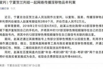 利用微云百度网盘贩卖传播色情视频赵某被判刑并处罚金2万元